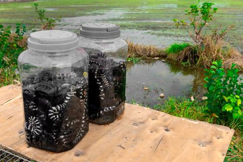 Sur de Vietnam_Conchinchina_perderelrumbo_Cochinchina_ Mekong
