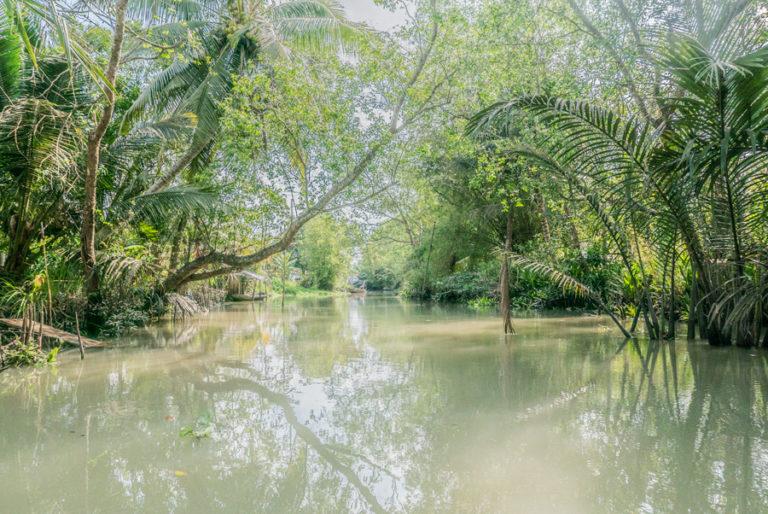 Canal de río Mekong con exhuberante vegetacion.