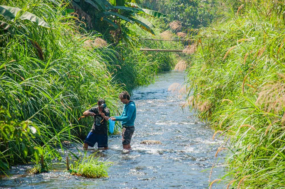 Dos personas pescando en un río con gafas de buceo y una especie de arpón. Mae Hong Son, la ciudad de la niebla.