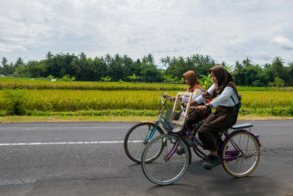 Dos chicas de Indonesia recorren en bicicleta unos verdes campos rodeados de palmeras. Yogyakarta
