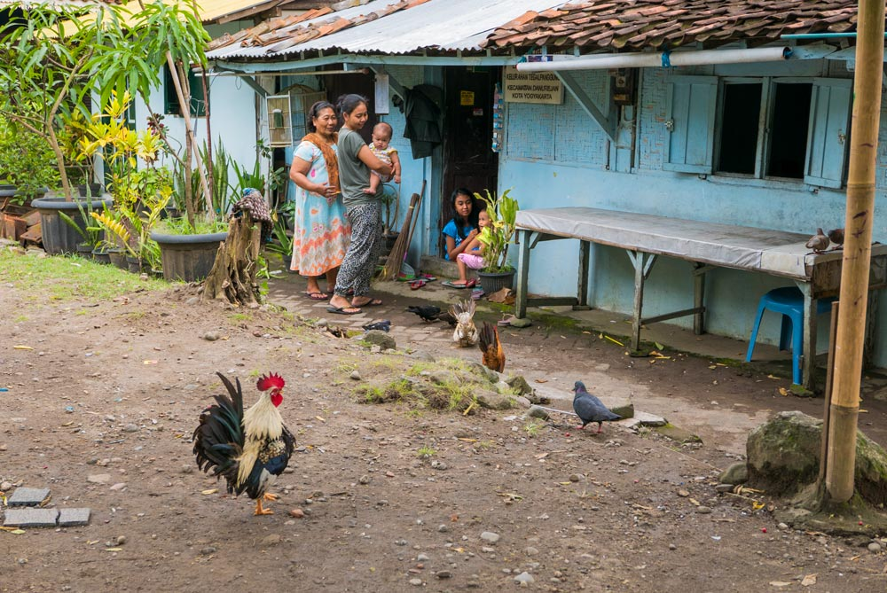 Escena de una familia en la puerta de su casa. Dos mujeres y sus tres hijos rodeadas de gallinas. Yogyakarta