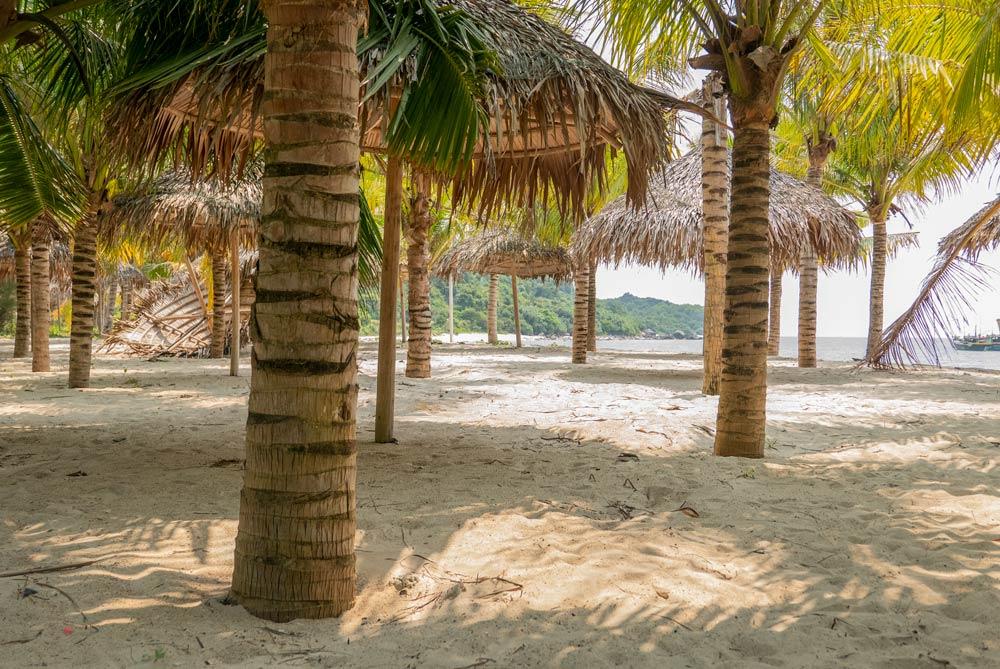 Arena blanca en una playa llena de palmeras y sobrillas hechas de paja. Islas Cham