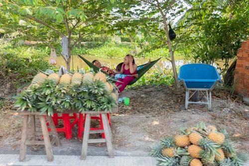 Puesto de venta de piñas en la carretera. Las dos vendedoras descansar en una hamaca colgada en unos árboles. Te espero en la Conchinchina