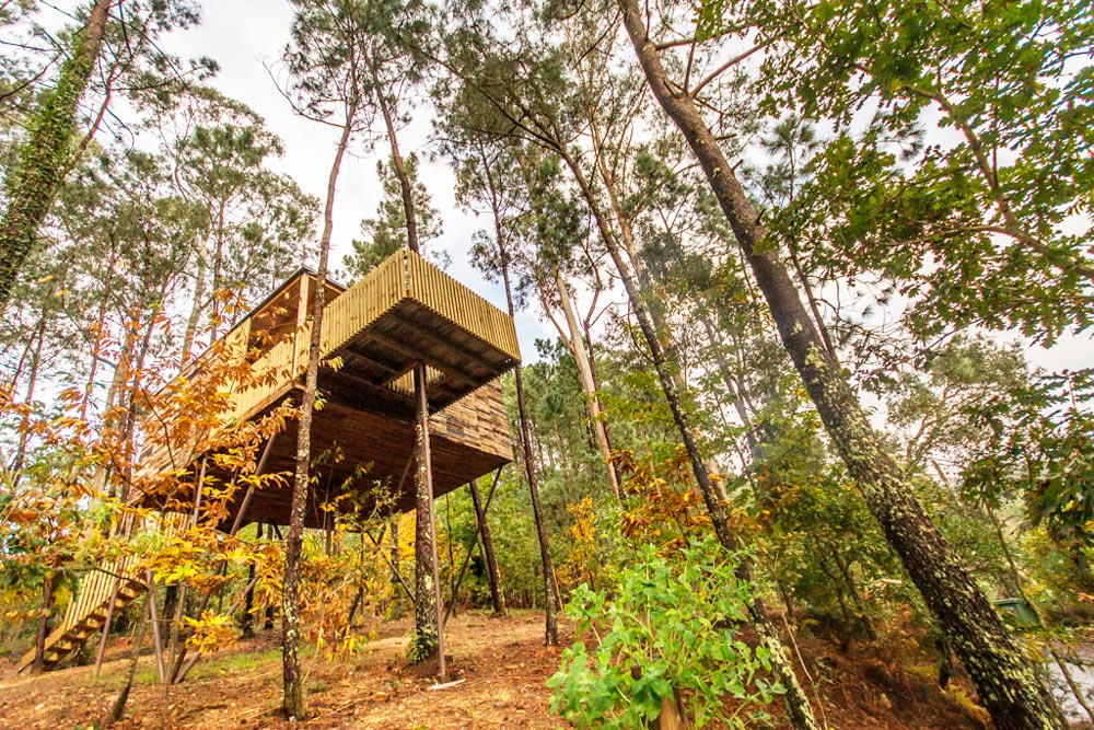 Cabaña en un árbol, rodeada de vegetación. 20 alojamientos originales en Galicia con encanto. Perder el Rumbo