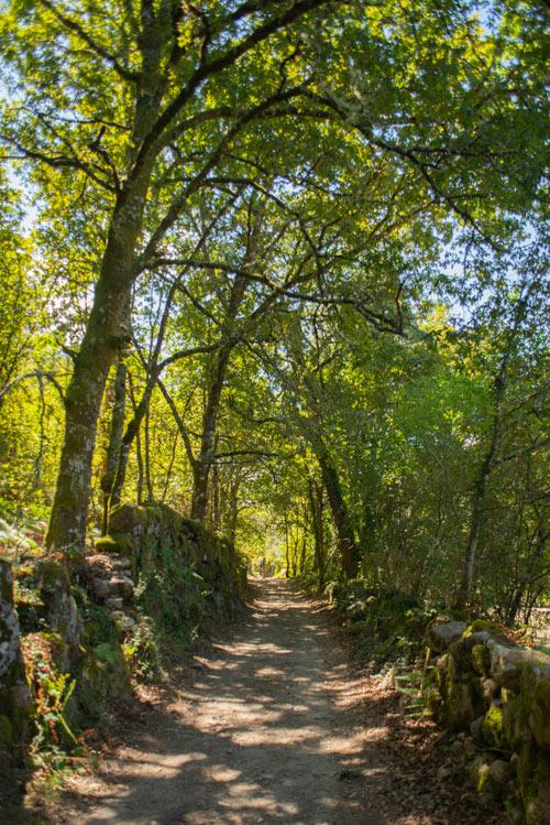 Parque Natural da Baixa Limia-Serra do Xurés