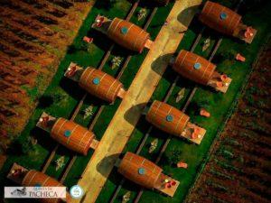Barriles de vino enormes a modo de alojamiento a vista de pájaro. Tienen terraza y jardin y están rodeados de viñedos. 20 alojamientos originales en Portugal con encanto