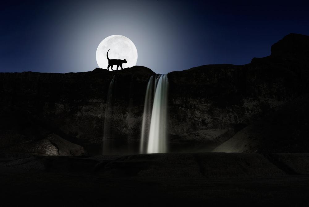 Jólakötturinn ( el gato malvado ) paseando encima de la cascada de  Seljalandsfoss. Perder el Rumbo.