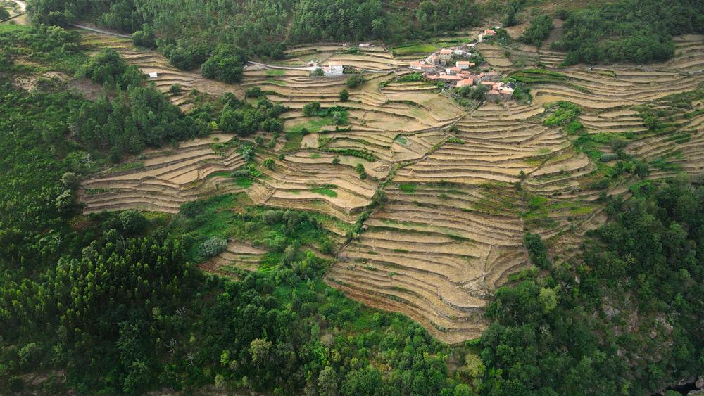 Socalcos o terrazas de Sistelo. Un pequeño Tíbet en Portugal. Se ven los escalonados cultivos labrados en las laderas de las montañas