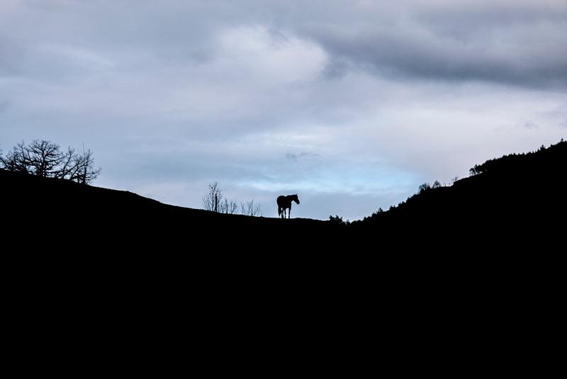 Caballo en una montaña a contraluz, solo se ve la silueta de la montaña y del caballo. 20 lugares que ver en Galicia imprescindibles. Perder el Rumbo