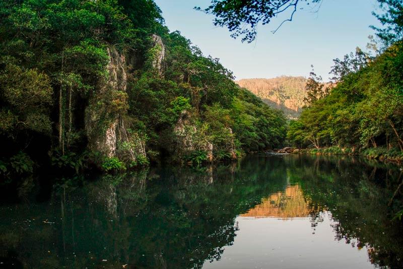Fragas del Eume, se ve el río rodeado de verde vegetación en un día soleado. 20 lugares que ver en Galicia imprescindibles. Perder el Rumbo