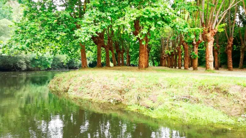 Río Mandeo de Betanzos con una bonita área repleta de árboles. 20 lugares que ver en Galicia imprescindibles. Perder el Rumbo