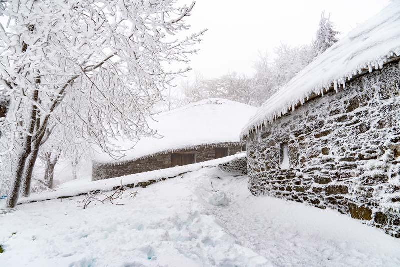 Pallozas de O Cebreiro cubiertas de nieve. Se ven árboles completamente blacos. 20 lugares que ver en Galicia imprescindibles. Perder el Rumbo
