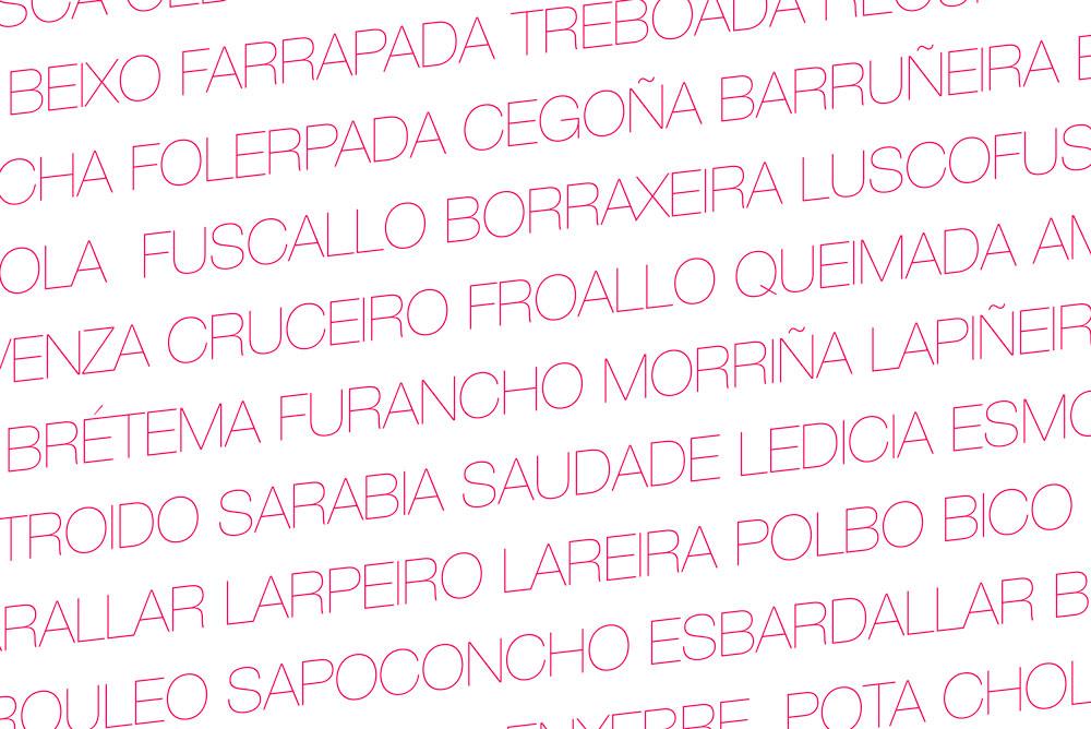 Palabras en gallego escritas en la fotografía. Palabras bonitas en gallego que debes conocer en tu viaje a Galicia. Perder el Rumbo