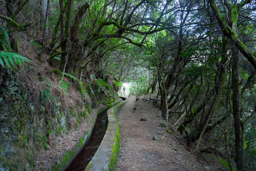 Canal de agua Marcos y Cordero cerca de la Casa del Monte