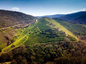 Terrazas en las laderas de los cañones del río BIbei. Qué ver en Pobra de Trives. Perder el Rumbo