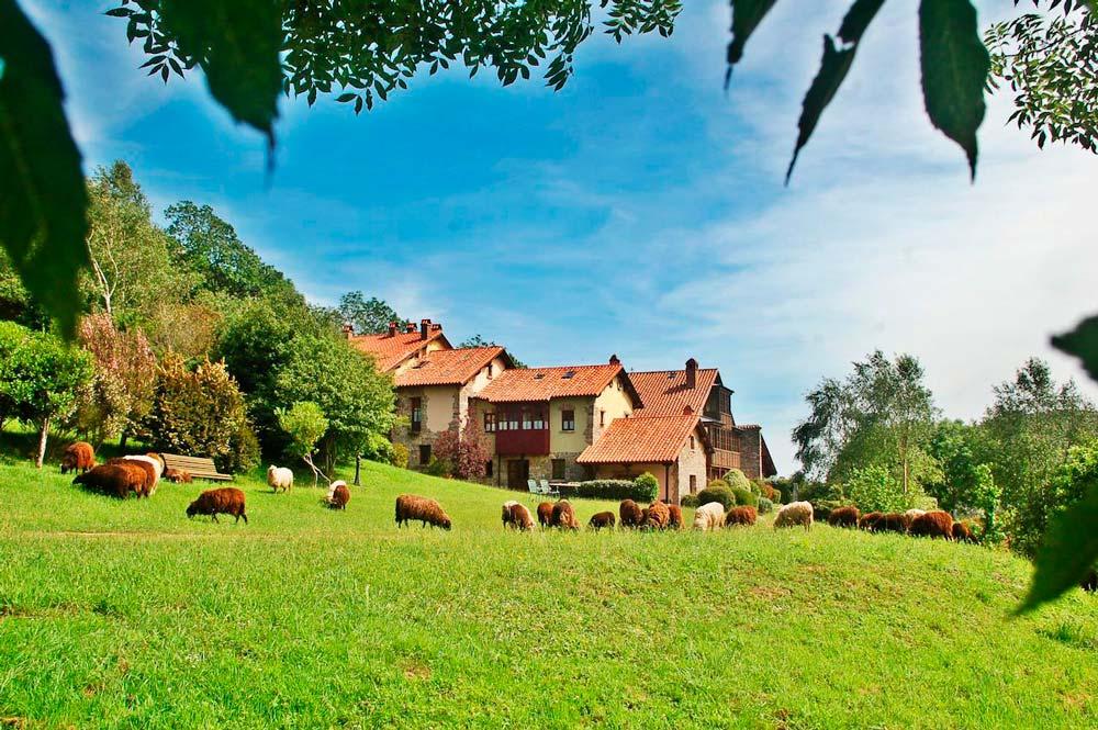 Preciosa casa rural en medio de un verde prado con ovejas pastando. 10 espectaculares casas rurales en Asturias
