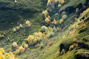 Valle entre montañas de árboles de colores. 9 ideas para disfrutar del Otoño en Galicia