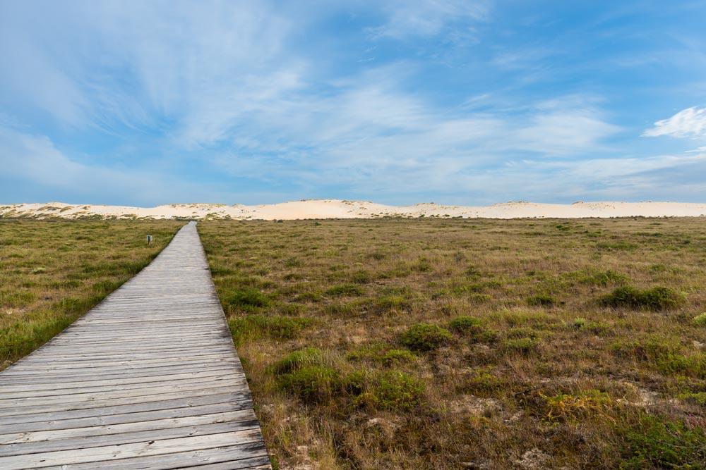Duna vista desde un paseo de madera. Guía de los 6 Parques Naturales de Galicia.