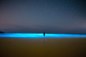 Silueta de una persona en el Mar de ardora que ilumina el mar en una playa. Fotografía nocturna. Mar de Ardora. Magia en las playas de Galicia. Perder el Rumbo